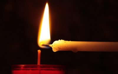 Load shedding and power outages can damage your appliances